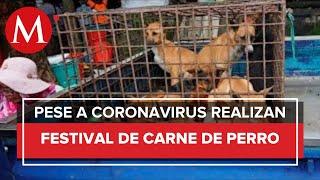 China abrió su feria anual de carne de perro en plena pandemia
