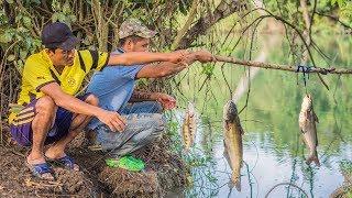 Pesca Con Colgados Técnicas Para Pescar En Ríos