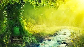 Relaxing Music 24/7, Reiki Music, Meditation, Healing, Zen, Spa, Yoga, Study, Sleep, Calm Music