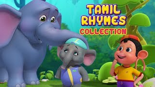 Gambar cover சின்ன யானை and more Animal Rhymes | Tamil Rhymes for Children | Infobells