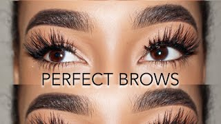 Six Steps To Perfect Brows (TUTORIAL) | LLETITIA ONLINE