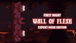 Terraria 1.3.1 - [Expert Mode Speedrun] Wall of Flesh on First Night