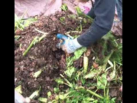 El compost org nico abono org nico y su realizaci n - Hacer abono organico ...