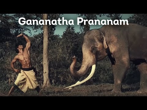 Gananatha Prananam (Elephant Salutation)   Vidyut Jammwal   Chuck Russell   Junglee Mp3