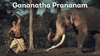 Gananatha Prananam (Elephant Salutation)   Vidyut Jammwal   Chuck Russell   Junglee