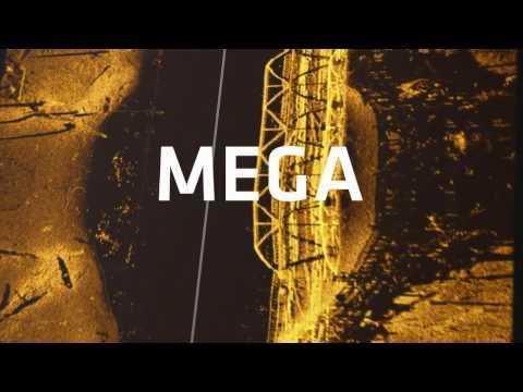 MEGA Imaging - Freshwater