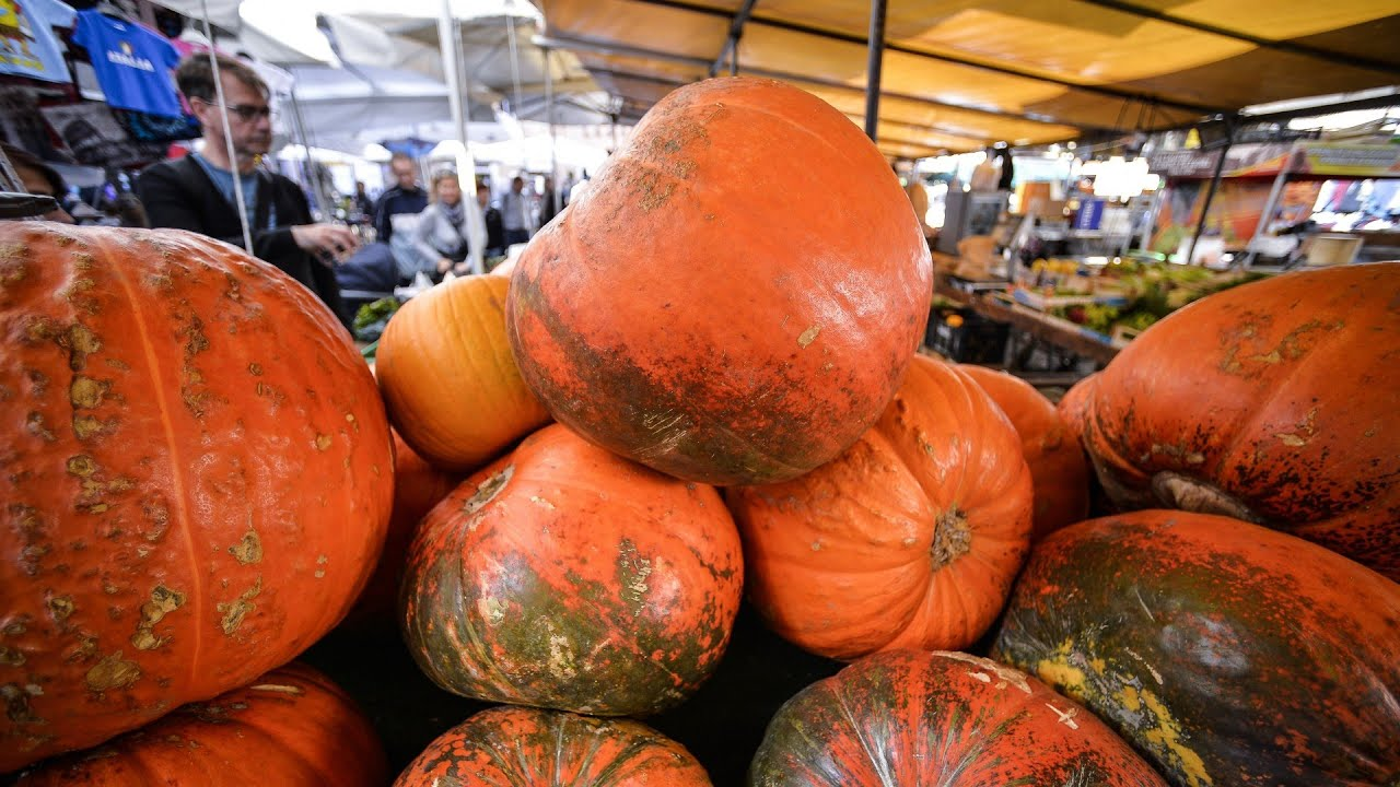 beneficios de la calabaza blanca para la diabetes