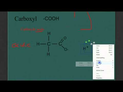 Intro to Organic Molecules: Functional Groups