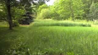 Homestead Grain Production