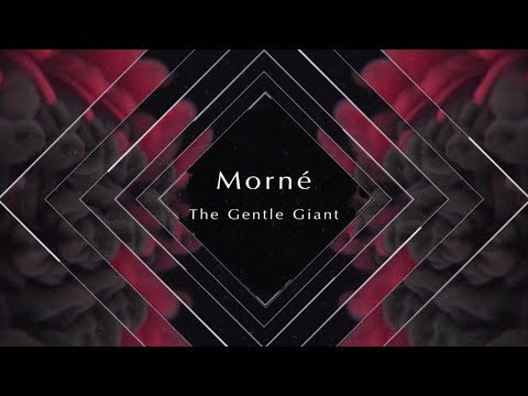 Morne Morkel | The Gentle Giant