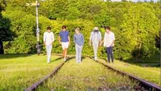 One Direction I Would Lyrics