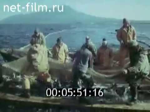 знакомства северо-курильск