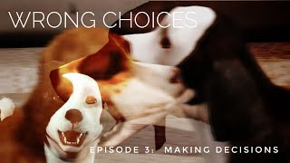 Wrong Choices Episode 3 - Sims 3 Pets Story