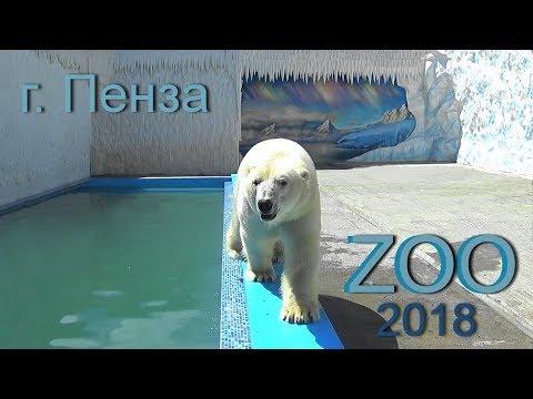 г. Пенза. Зоопарк после реконструкции. 2018 год.