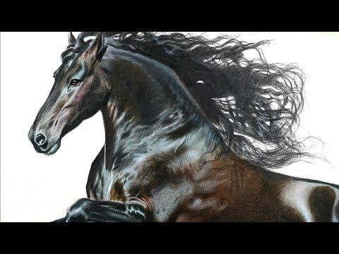 Drawing a horse with 3D technique - Speed Drawing - Time Lapse