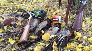 Коллективная охота на фазана/ Столько фазана еще не было! 9 петухов...