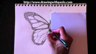 Drawing a butterfly with Paolo Morrone