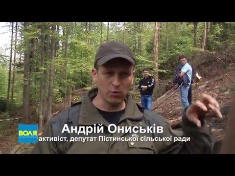 Активісти Косівщини продемонстрували міністру екології варварську вирубку лісу у НПП Гуцульщина