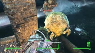 Fallout 4 Секреты - Нора Когтя Смерти.