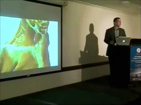 acp-2012---lecture:-assessment-of-the-upper-extremity