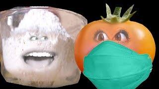 Tomat Lebay - SAKIT !