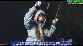 마루호 화살촉오징어 거제도 수중전~ 화살오징어낚시 야간…