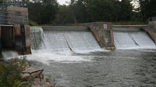 September 9 Salmon Run