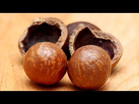 How Macadamia Nuts Are Good For You | Health And Nutrition