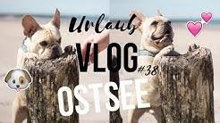 HUND IM URLAUB - POLNISCHE OSTSEE - EMPFEHLUNGEN - VLOG #38