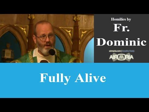 Fully Alive - Nov 10 - Homily - Fr Dominic
