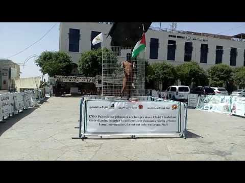 Palestinian Revolution