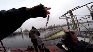 Ловля пассивного судака / Рыбалка 2020 / Мандула / Судак