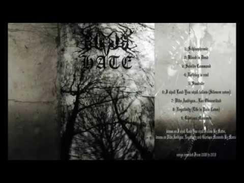 Black Hate - I Shall Lead You Shall Follow (Silencer cover)