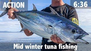 Mid winter tuna fishing