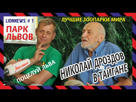 Львиная новость №1. Николай Дроздов в сафари-парке Тайган (июнь 2015)