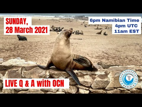 Live Q&A with Ocean Conservation Namibia on 28 March 2021