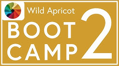 Wild Apricot Boot Camp Lesson 2: Managing Events & Finances