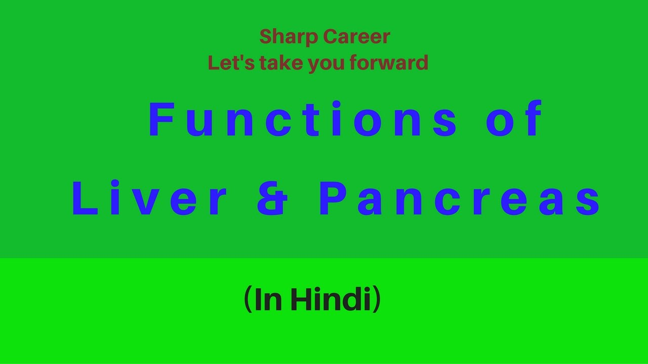 Functions of liver pancreas in hindi youtube ccuart Gallery