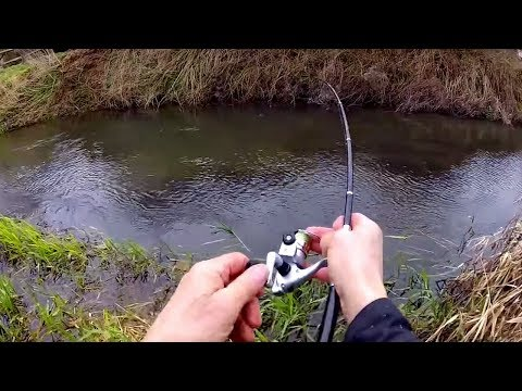 Micro Pen Fishing Rod Challenge - Can I Catch Fish On A Tiny Rod?!