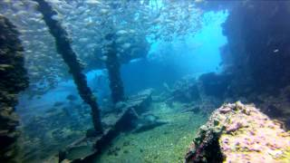 Gulf of Mexico Dive 4-27-13