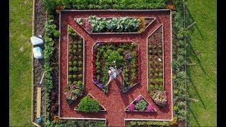 Turul grădinii de 8x8 m