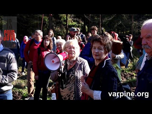 Žygis miškams išsaugoti 1500 dalyvių ir oficiozų tyla  2018-10-13