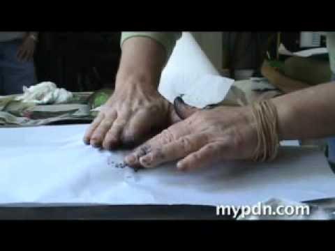 Gyotaku Art