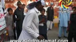 Sheedi Badshah Hum Badshah Sindh Salamat.