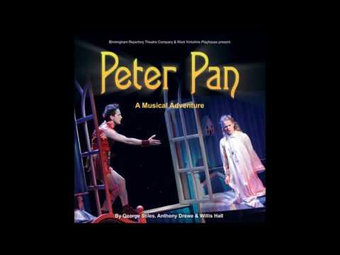 Peter Pan: A Musical Adventure #4. Never Land