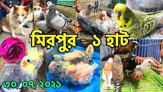 চলমান লকডাউনে মিরপুর - ১ হাটের পাখি ও কবুতরের দর জানুন | প্রতি শুক্রবার | Mirpur - 1 Pet Market #296