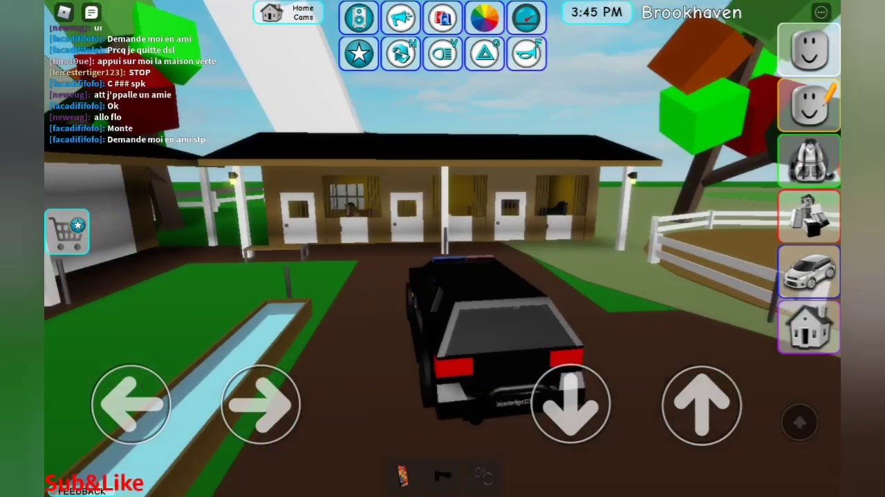 Being a police in brookhaven (Roblox) YouTube