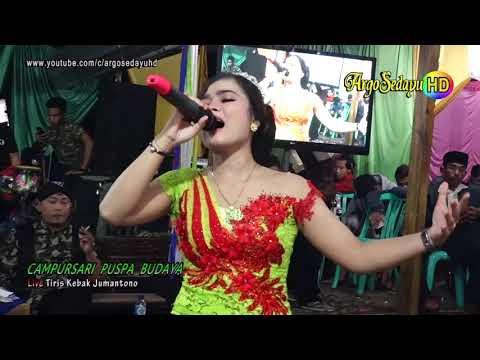 Vivi Voleta EGOIS Areva Music HD Cs Puspa Budaya Live Jumantono