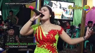 Download Vivi Voleta EGOIS Areva Music HD Cs Puspa Budaya Live Jumantono Mp3