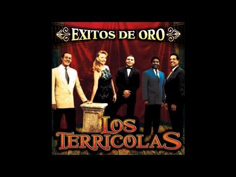 Descargar MP3 Los Terricolas - Lloraras